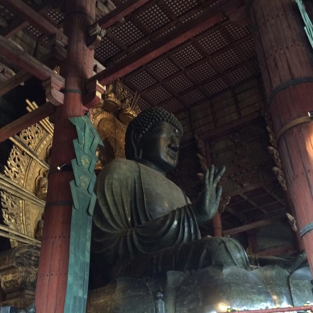 奈良といえば大仏さま。 左の柱の辺りに行くと、教科書と同じような写...