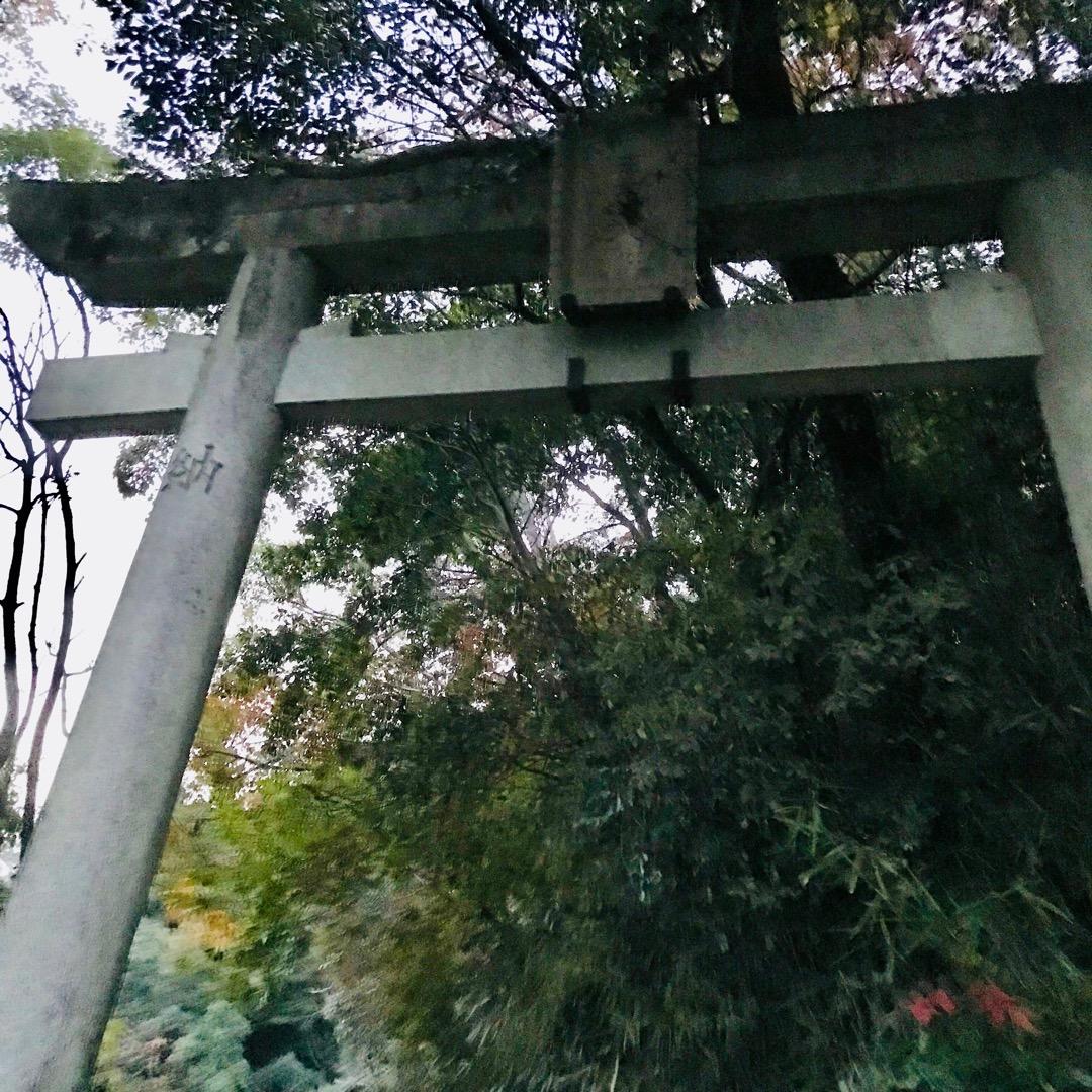 白高大神神社。 昔、中井シゲノという優れたシャーマンがいました。 ...