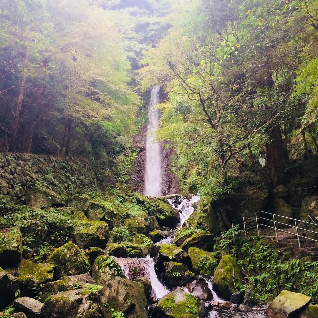 #養老の滝 へ。幻想的な雰囲気が良かった!  軽いハイキング感覚で...
