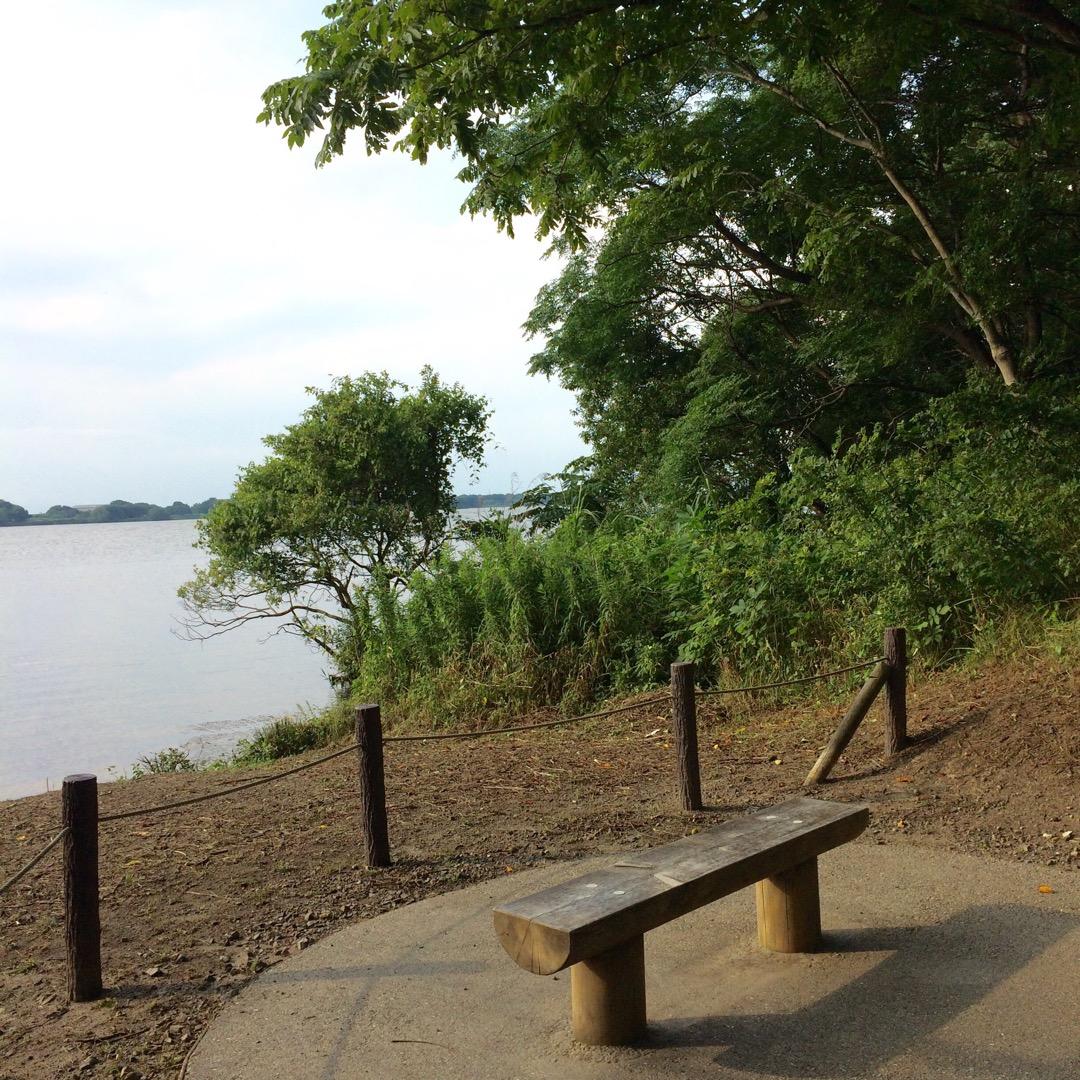 河畔にこんな可愛らしいベンチがあります。カップルの方いかがでしょう...