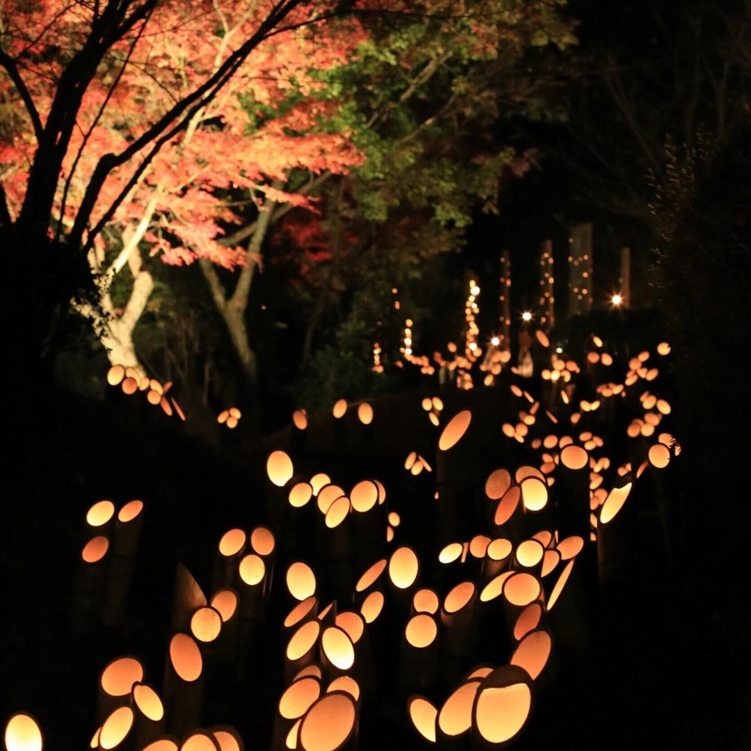 竹をを使った灯籠が暗闇の中で灯されてます 色んな大きさの穴を開けて...