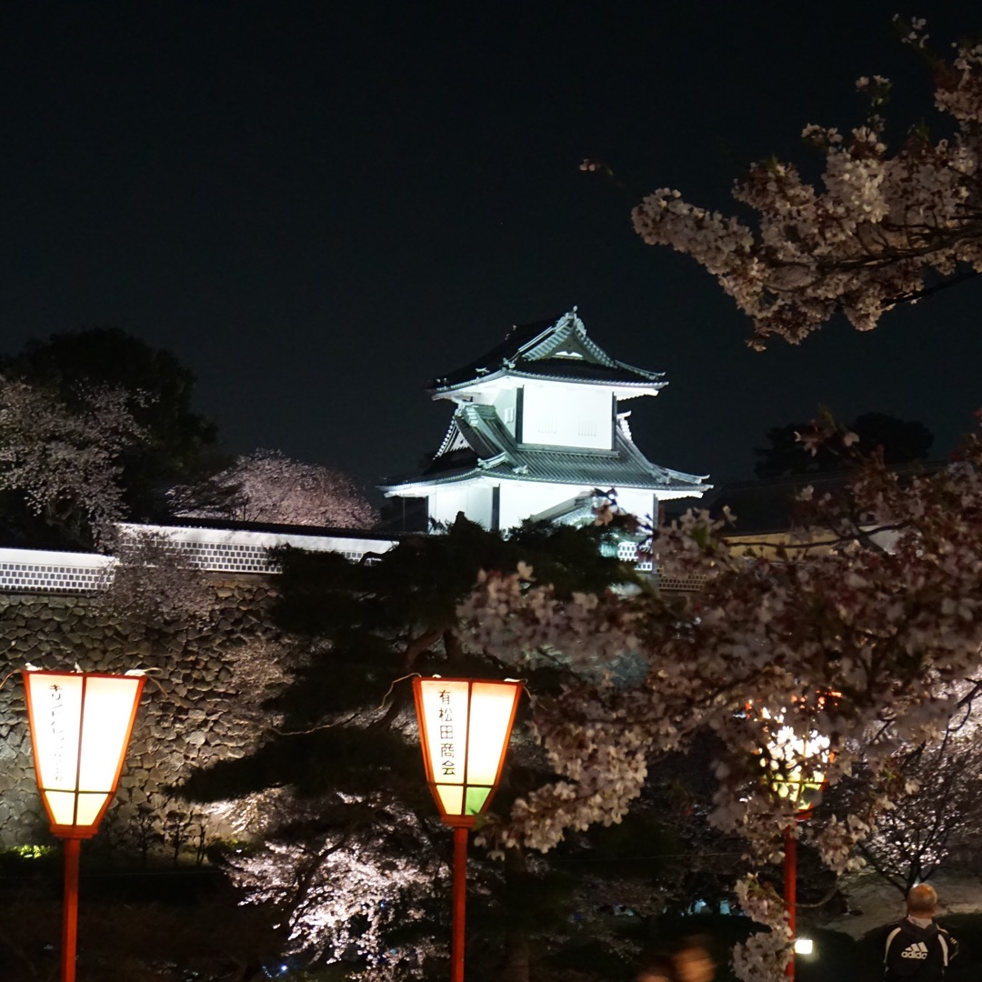 兼六園の茶店街から見える金沢城。桜のライトアップがとても綺麗でした...