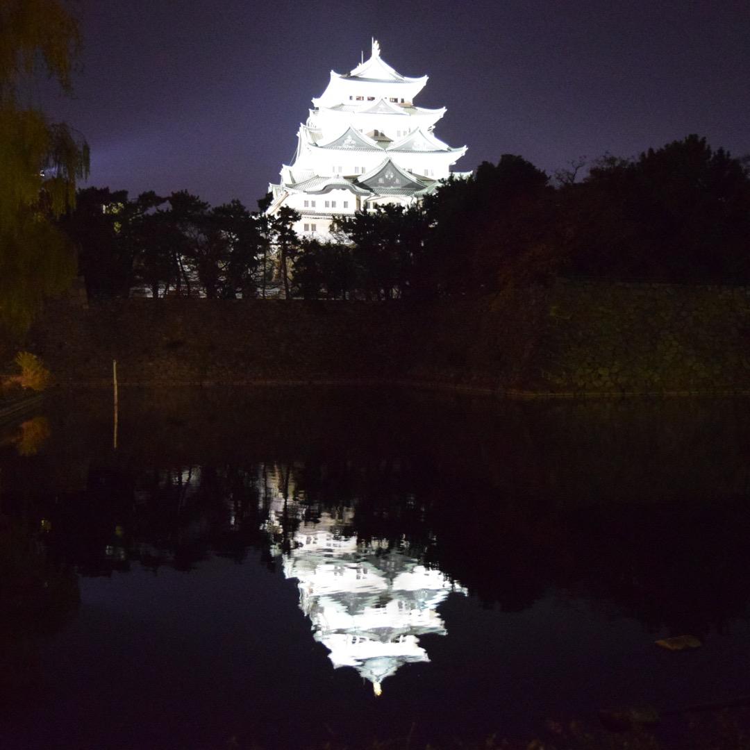 昼間の名古屋城はアップしましたが、こちらは夜のライトアップされた名...