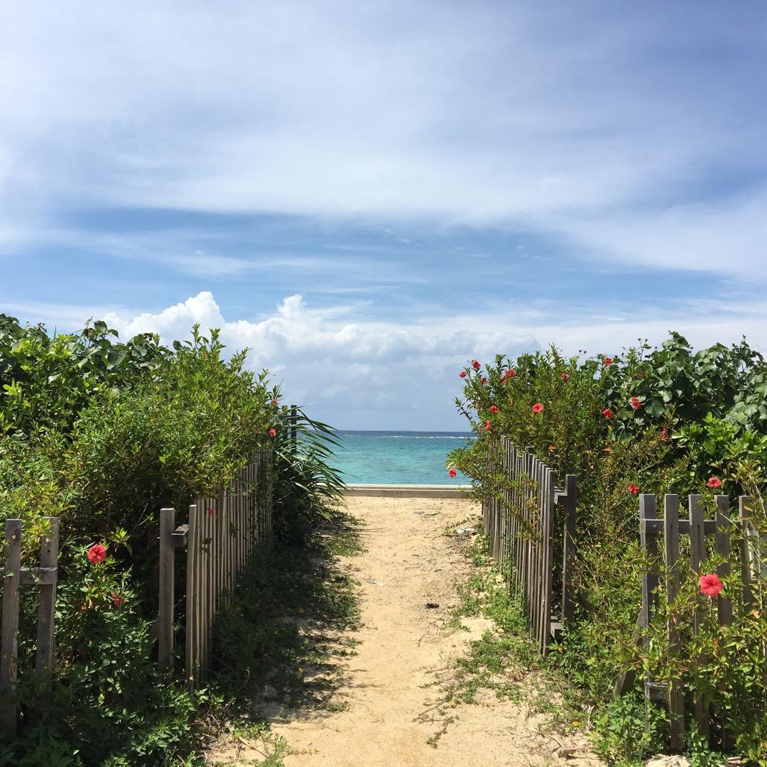 雰囲気もいいのに、あまり人がいない名護市民ビーチ。ここから見える海...