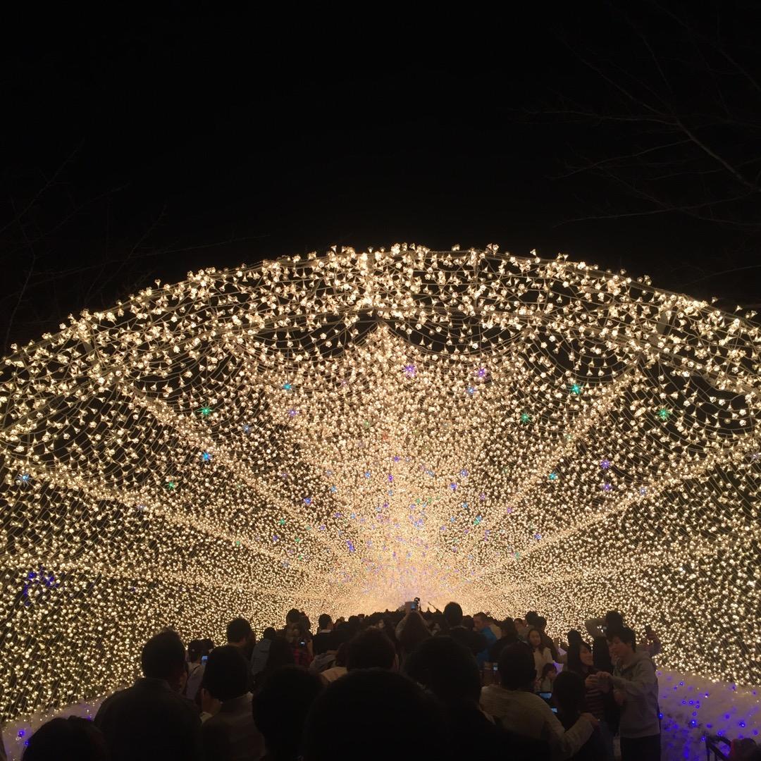 毎年冬にやってる光のトンネルです。 何回行っても楽しめます。 混ん...