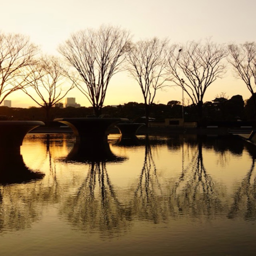 和田倉噴水公園は皇居お堀のそばにあり、数種類の噴水が楽しめます。夕...