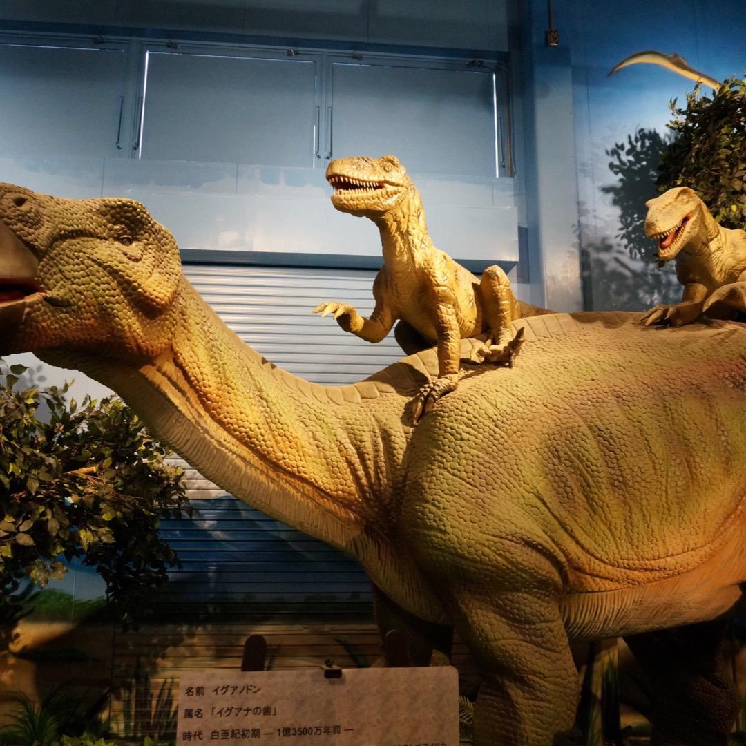 恐竜好き集まれ!恐竜や化石を楽しもう!