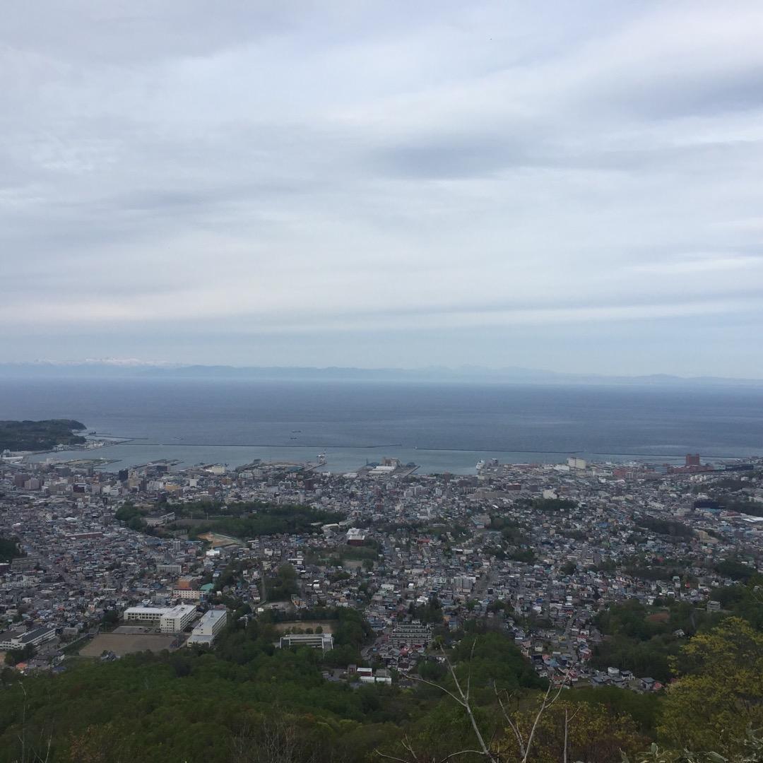 天狗山の山頂にある桜が満開だと聞いて来てみました(*^^*) 旦那...