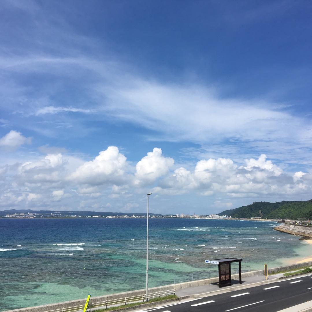 """道の駅""""許田""""はぜひ立ち寄ってほしいスポット。沖縄ならではの珍しい..."""