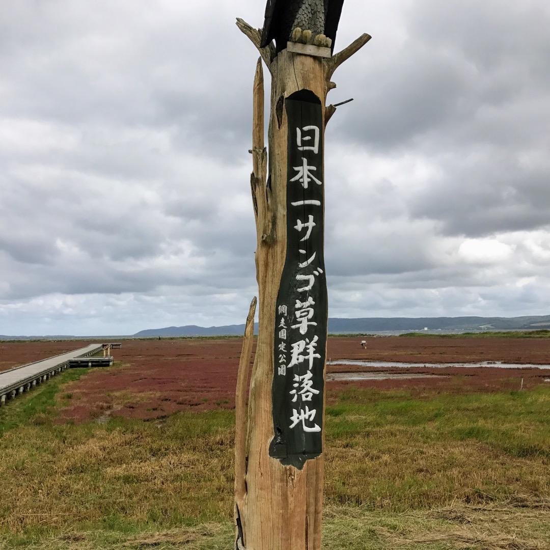 北海道網走のサンゴ草群生地で有名な能取湖畔卯原内に来ました。 少し...