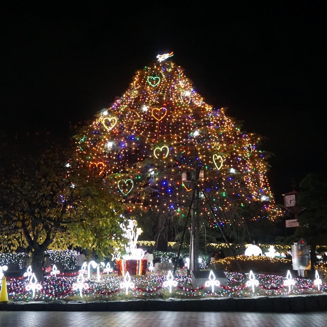 中山競馬場ではクリスマス時期にイルミネーションが開催されます。プロ...