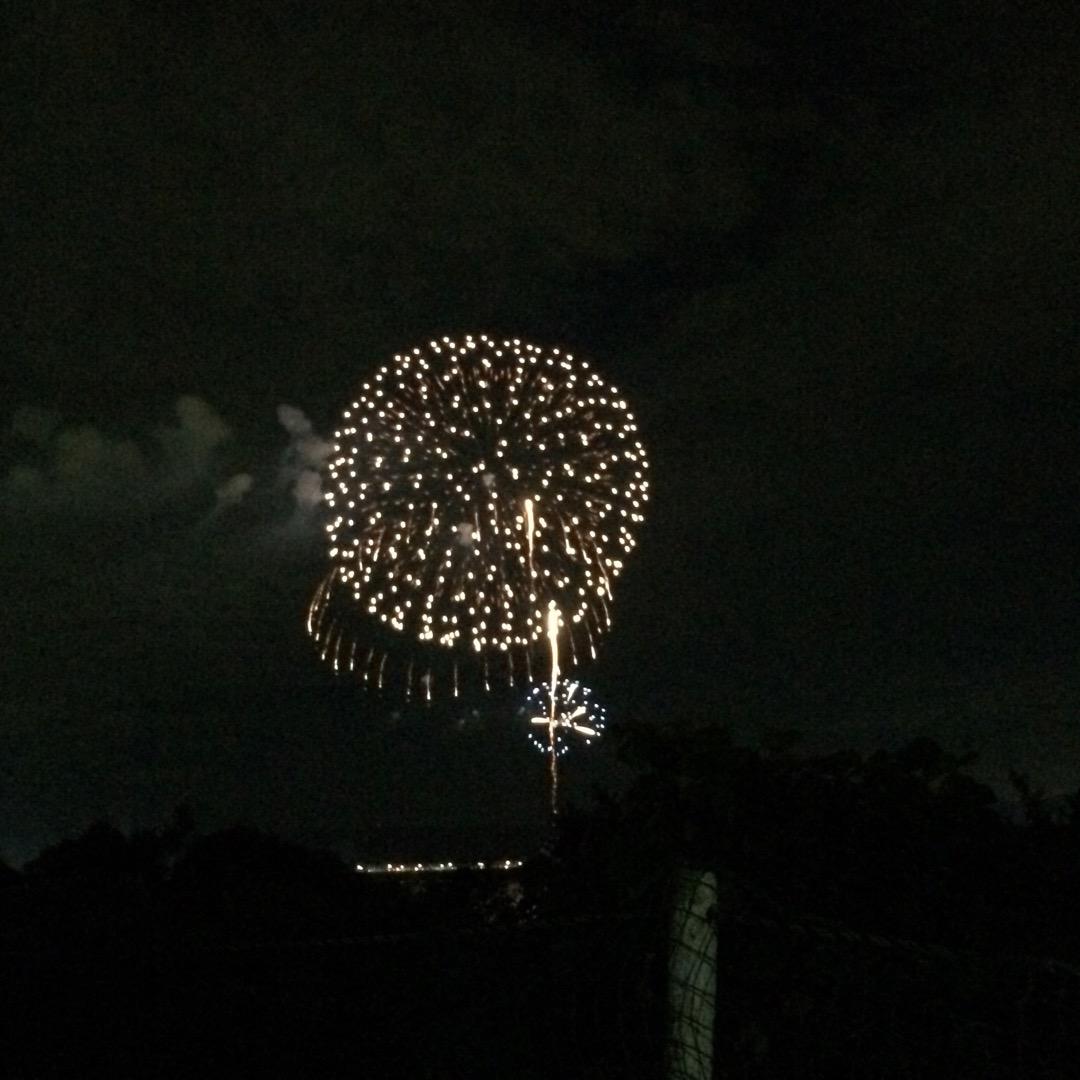 地元で毎年8月14日に開催される濃尾大花火。今年は堤防のグラウンド...