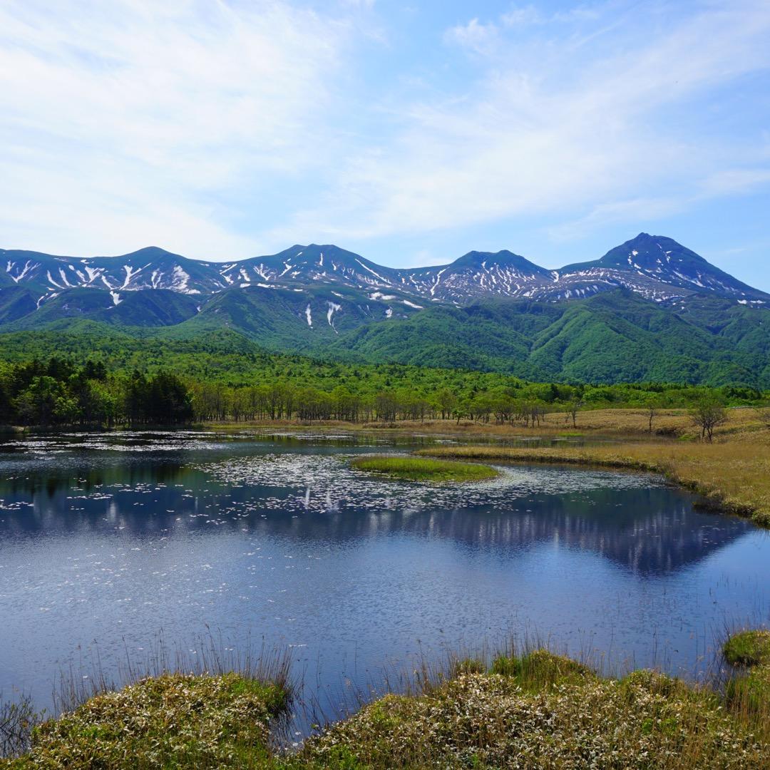 知床五湖🍃🍃 ここではヒグマとの遭遇率がかなり高く どこまでも広が...