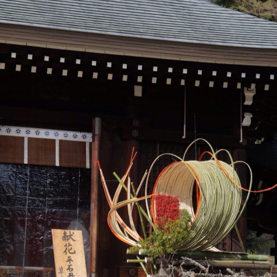 歴史ある神社のお正月は、草月流の大きな生け花で飾られていました。華...