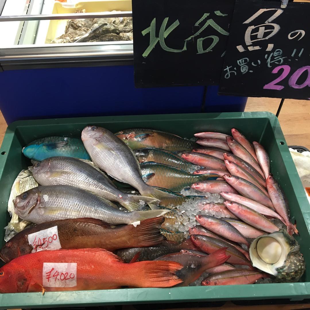 海が目の前にある海の駅、うみんちゅワーフは魚市場と野菜屋が入ってい...