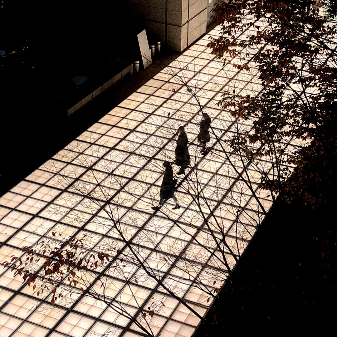 【東京国際フォーラムあたり】フォトジェニックな場所発見♡ これから...