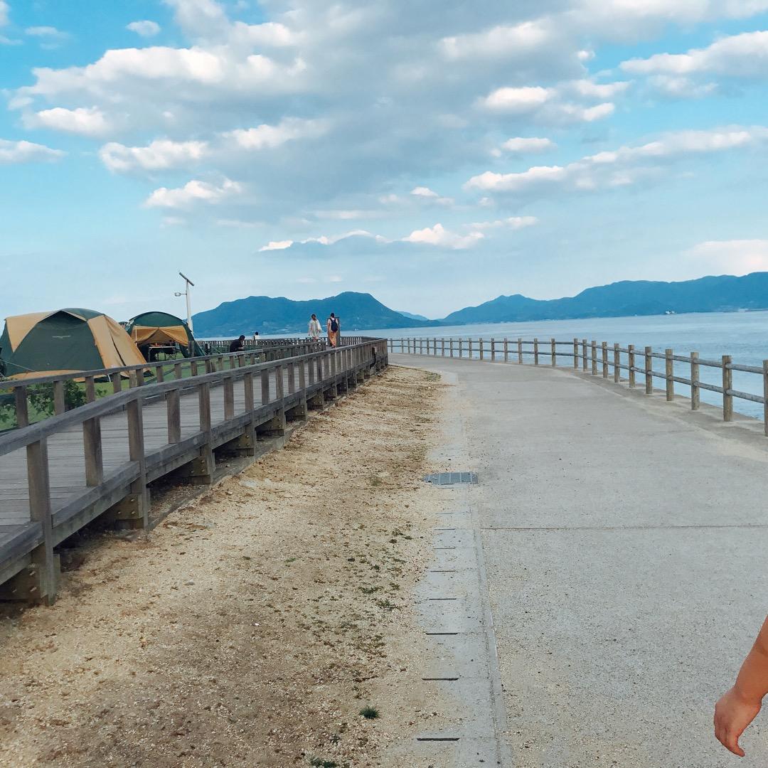 大久野島は道がきれいに整備されており、サイクリングもできます🚲また...