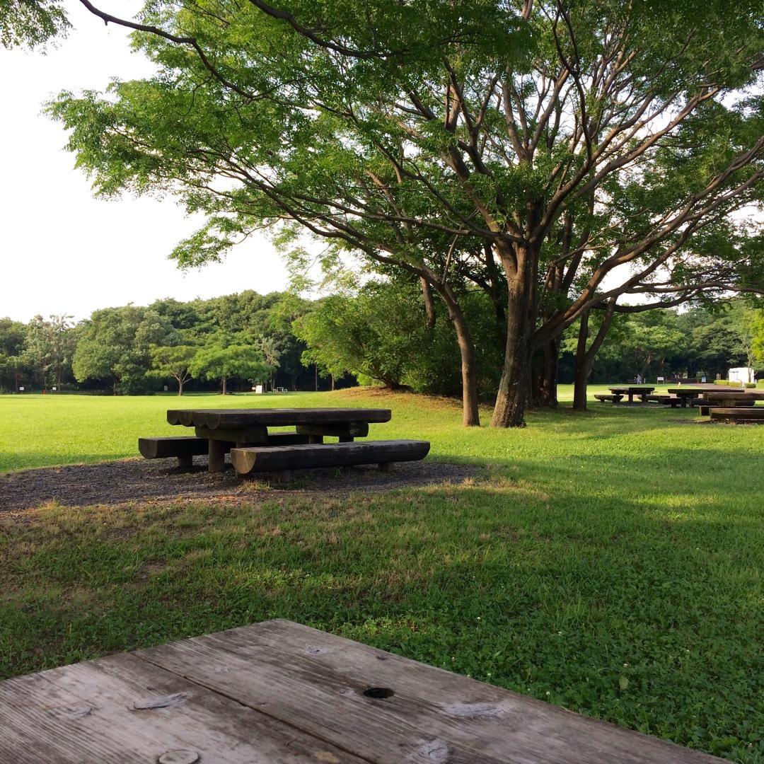 #ワイルドネイチャープラザ のピクニック広場 かなり敷地が広いし、...