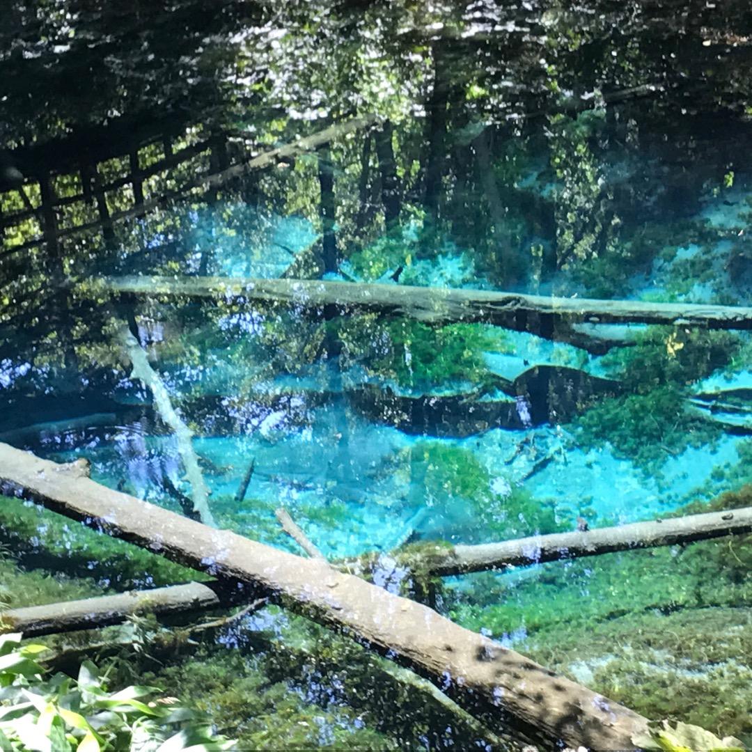 【北海道道東】大自然を感じることができる世界遺産。知床、神の池