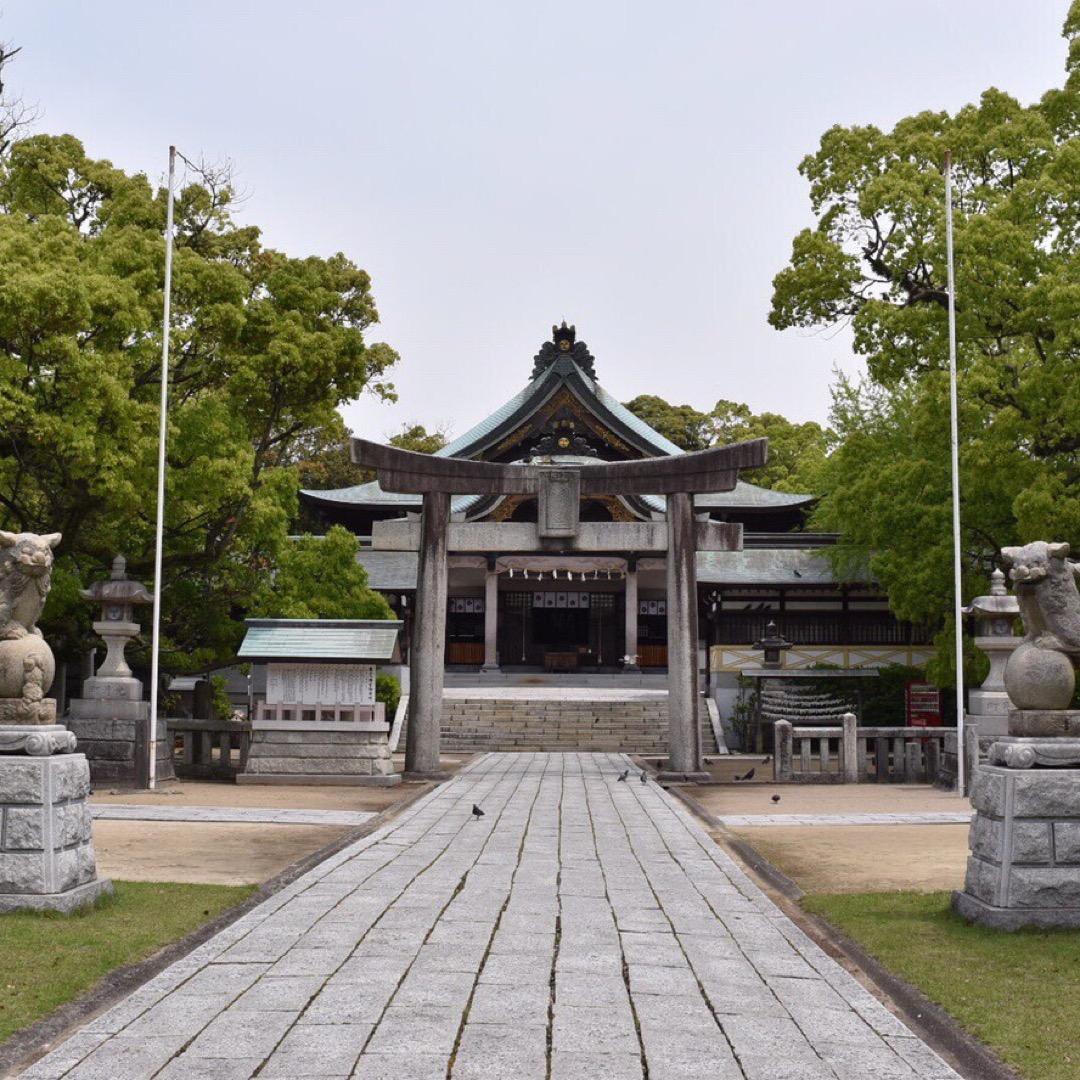 亀山八幡宮  鳩がたくさんいる神社で 餌をあげると一気に飛んできま...