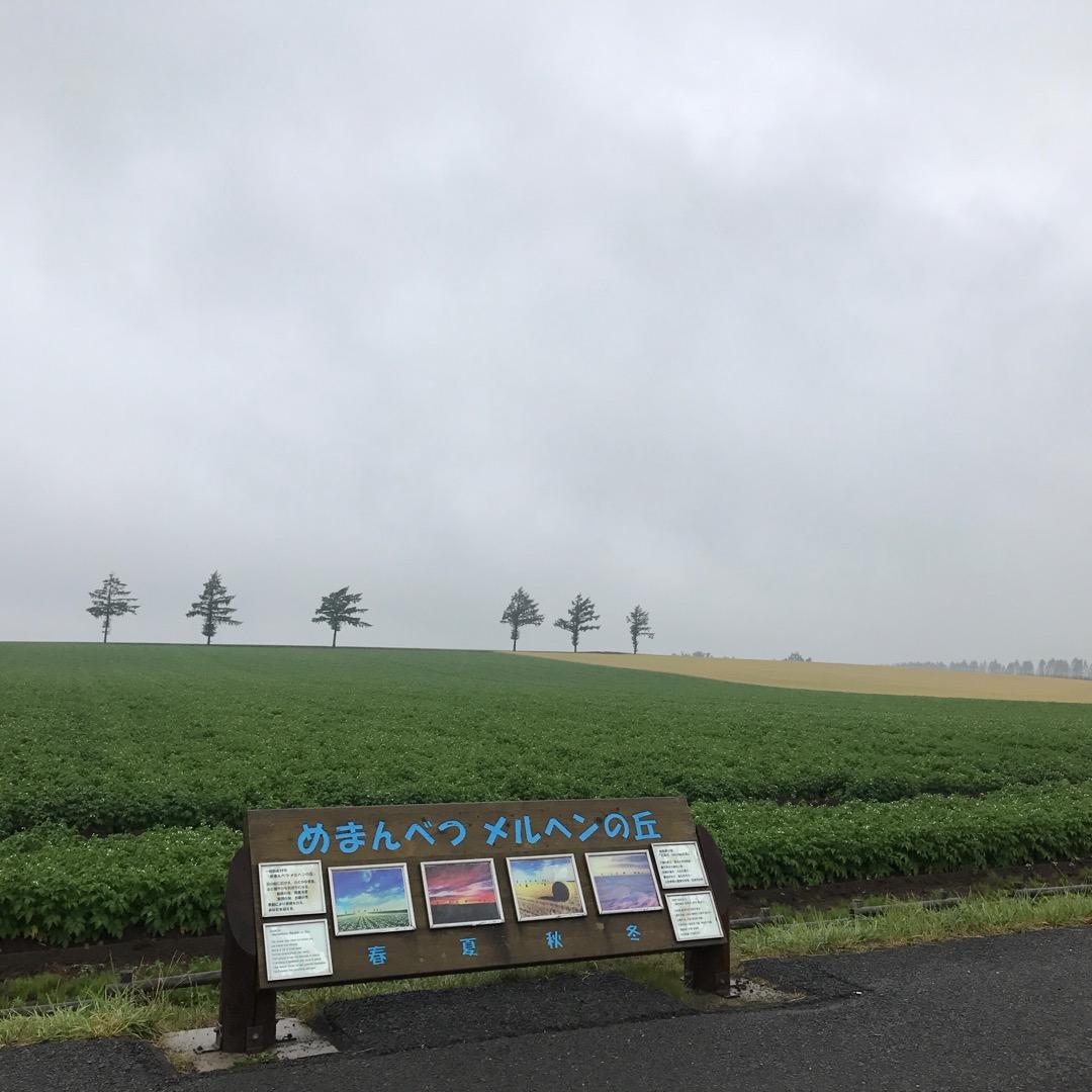 女満別メルヘンの丘 曇ってたけど綺麗でした! 畑の色が違うのがめち...