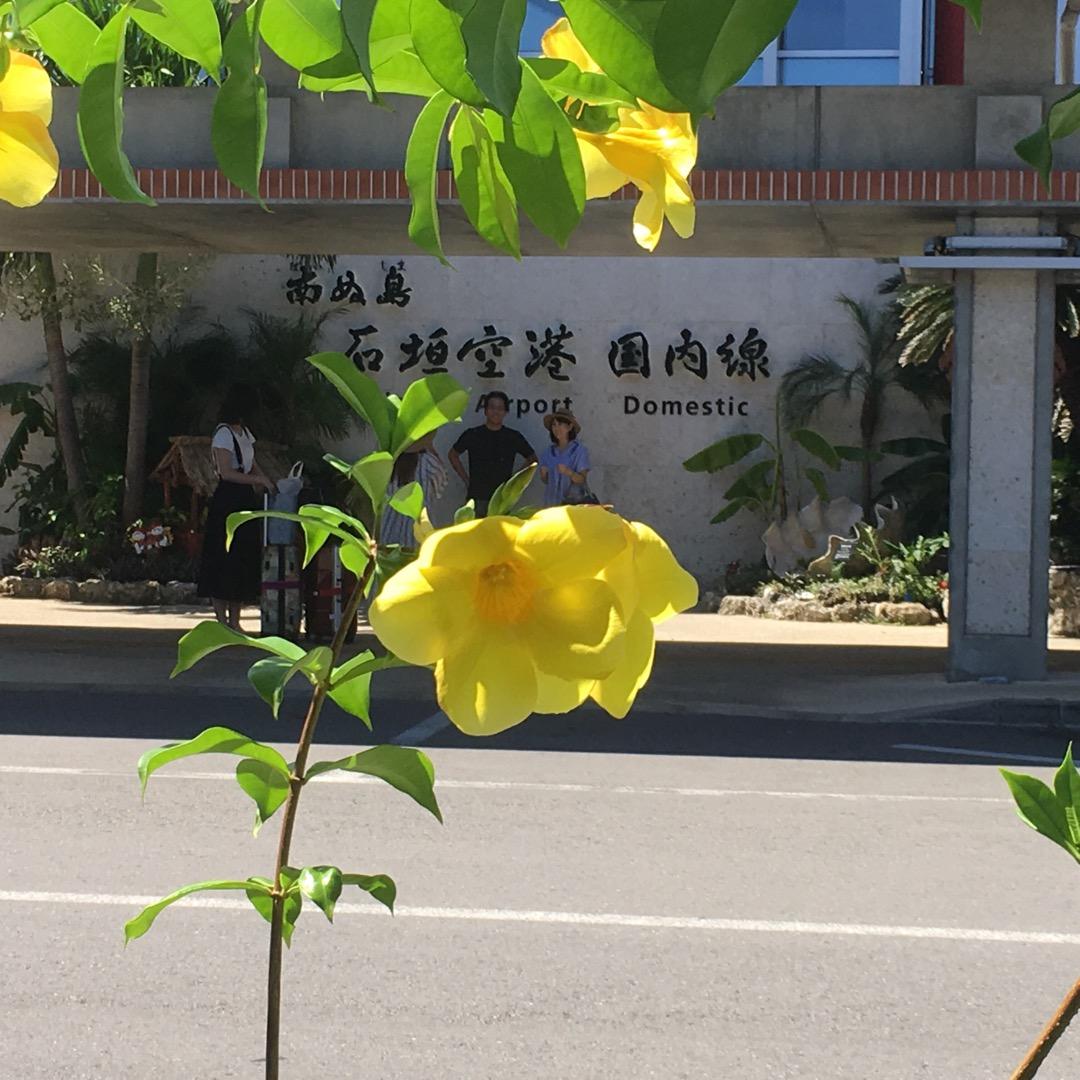 石垣島にやって来ました。真夏に戻って来た感じです。暑い💦綺麗なスポ...