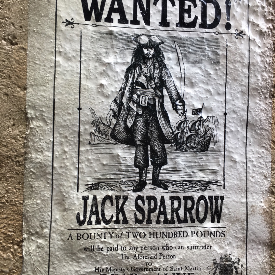 有名な海賊ジャックスパロウが指名手配されています。 #東京ディズニ...