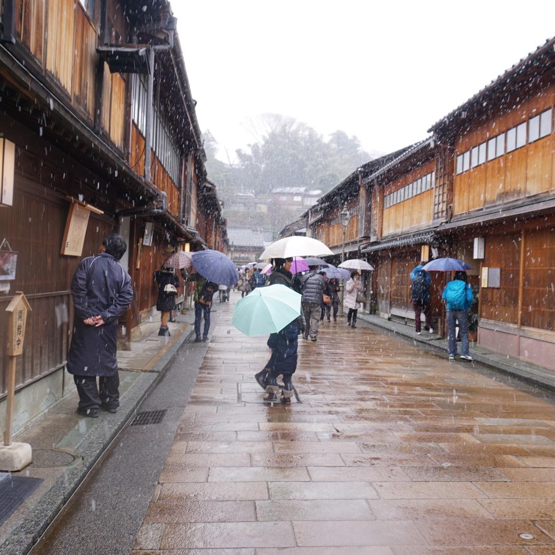 あいにくの天気。雨が雪に変わる瞬間に憧れていたひがし茶屋街に来まし...