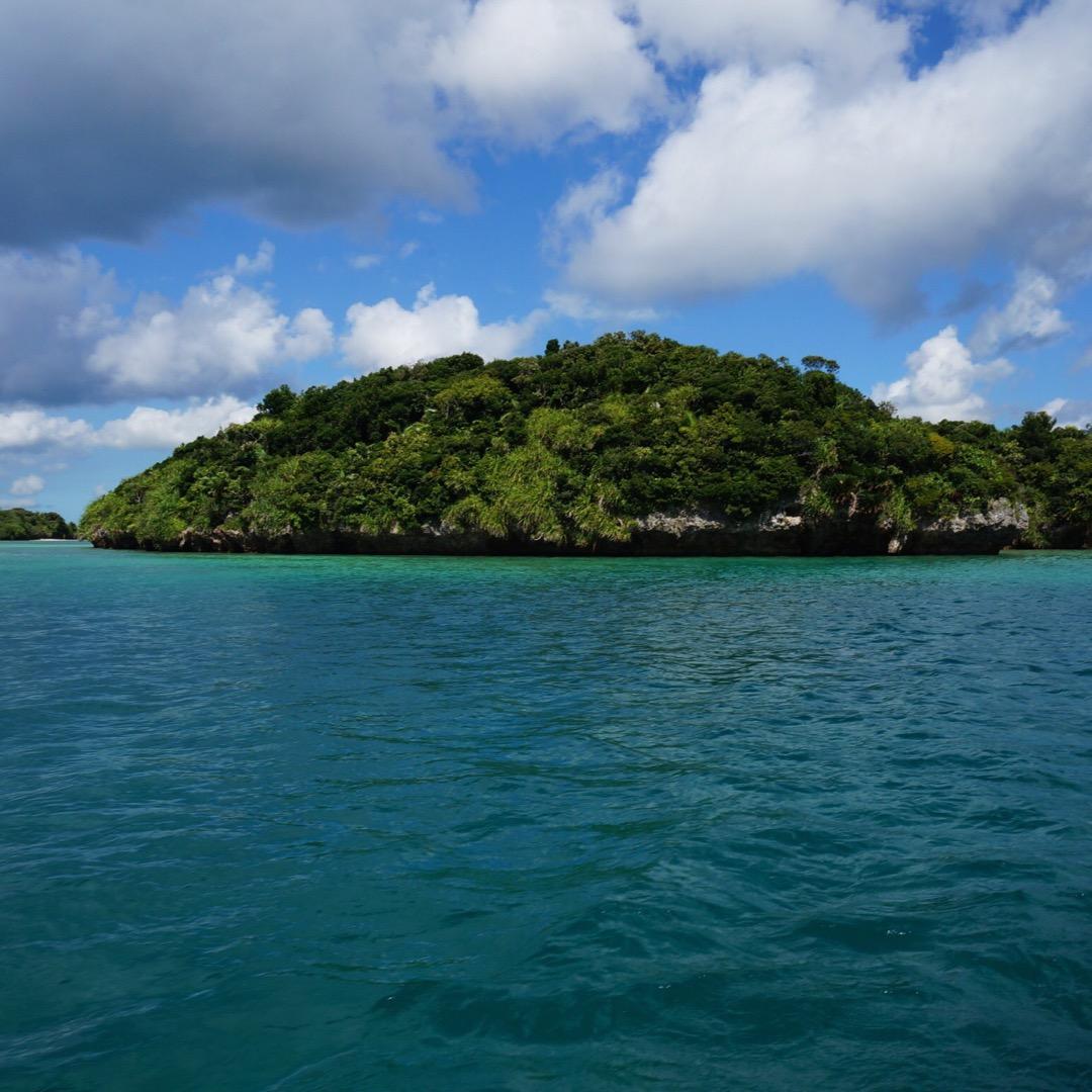 川平湾でグラスボート体験。子供たちも大興奮。珊瑚やお魚いっぱい見れ...