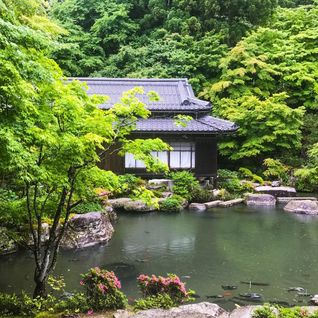 百済寺です。昔、織田信長によって焼き討ちに合いながらも再建されたお...