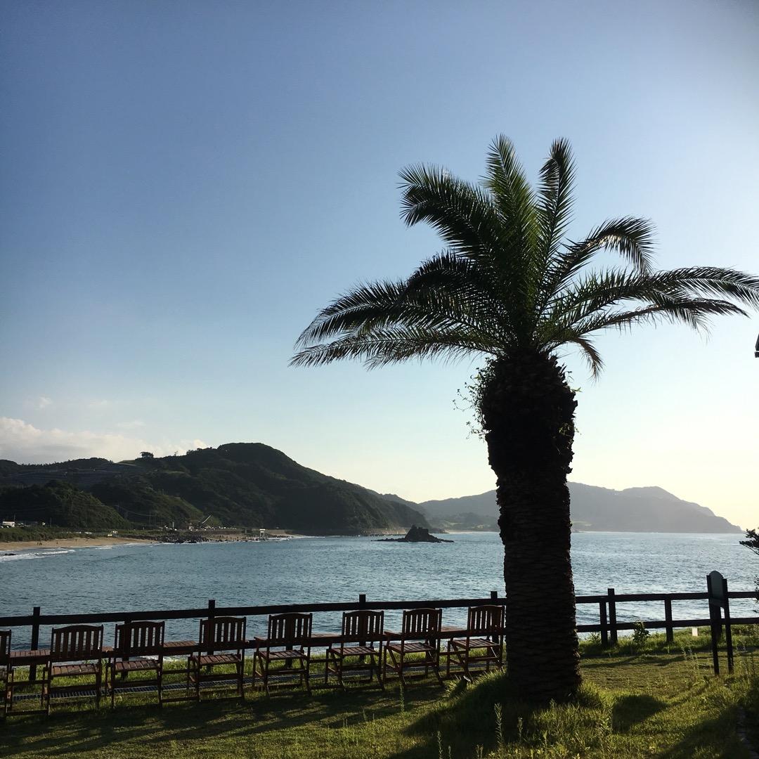 糸島のパームビーチ!今日は波が少し高かったですが、サーファーの人に...