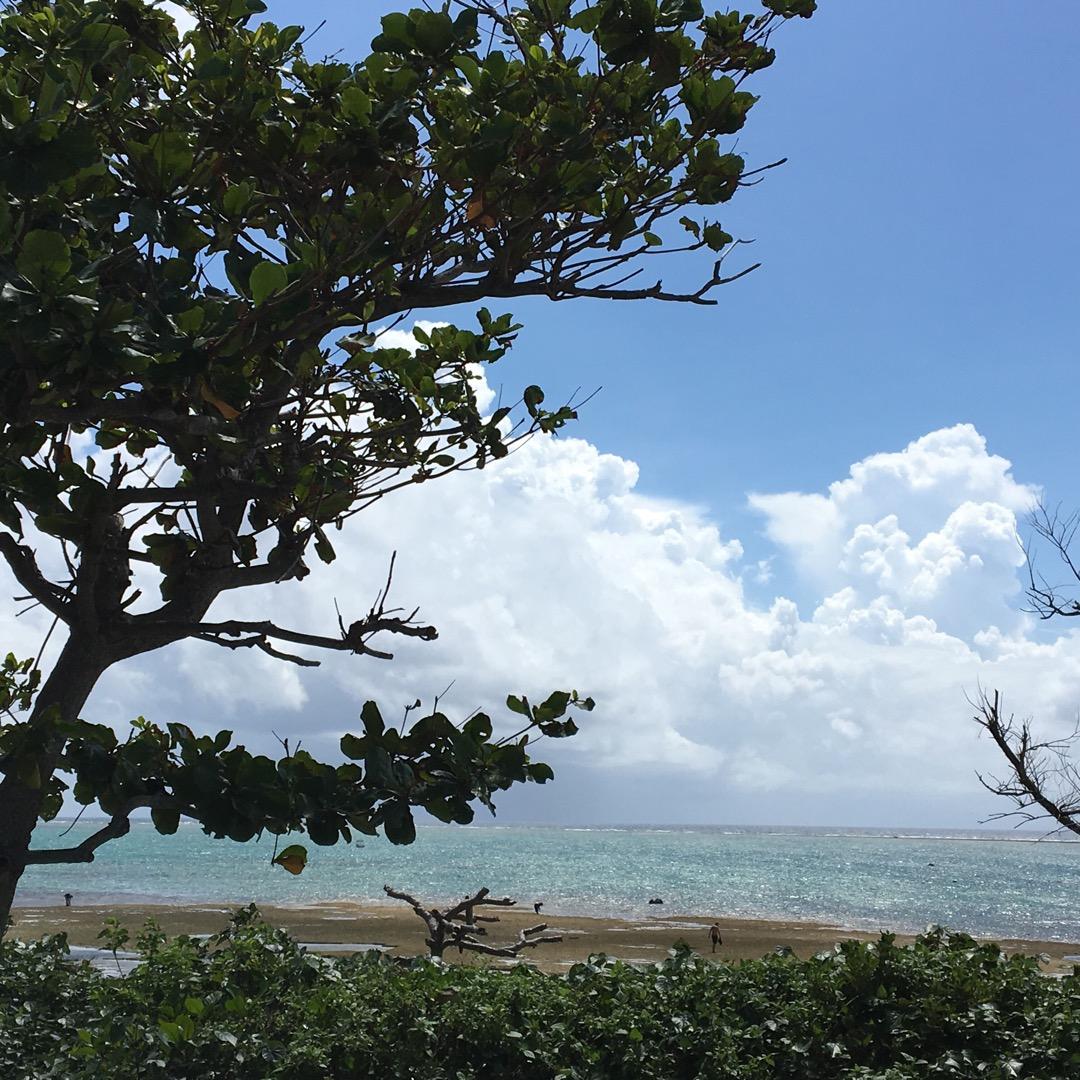 残波岬公園からは綺麗な海も見られます。巨大なシーサーもすぐ目の前に...