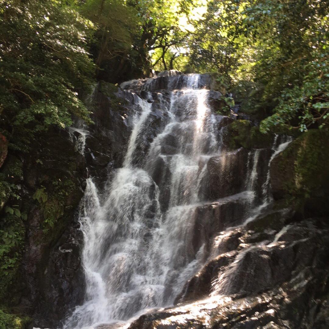 白糸の滝  こちらでマイナスイオンを💓  そのあと白糸滝の冷たいお...