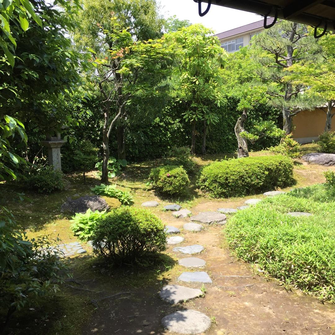 ちいさなちいさな博物館、 日当たりのいい素敵なお庭がありました。 ...