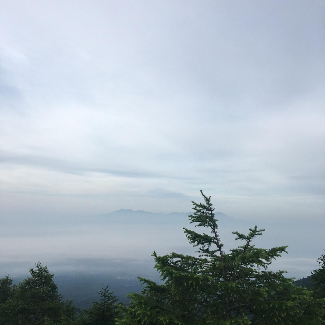 朝4,5時に到着した標高2000mの高峰高原。 雲海が観れるという...